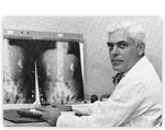 First Chief of Division of Urology