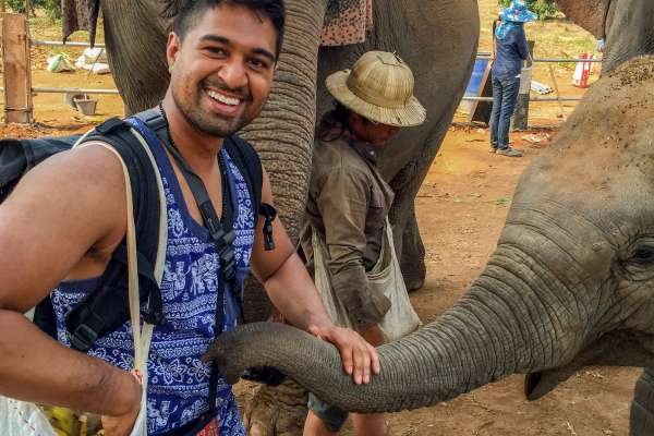doctor chaparala is in casual clothes petting an elephants trunk. another large elephant is behind him. other people are in the background